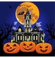 Haunted Castle at night vector image vector image