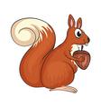 A squirrel vector image vector image