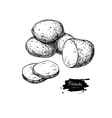 Potato drawing Isolated potatoes heap and vector image