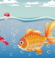 -goldfish for children - a joy for adults - the fu vector image