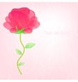 Beautiful card with a flower on delicate rosy vector image vector image