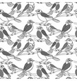 hand drawn birds seamless pattern vector image