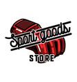 color vintage sport goods emblem vector image