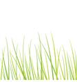 Grass - design element vector image vector image