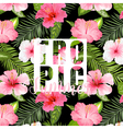 Tropical Palm Tropical Flowers Exotic floral vector image