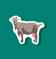 goat paper sticker on stylish background vector image