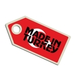 Made in Turkey vector image