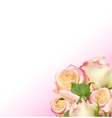 Realistic Rose High Quality vector image vector image