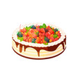 cake with berries and fruits vector image