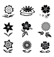 Flower set Chamomile lily orchid water-lily vector image