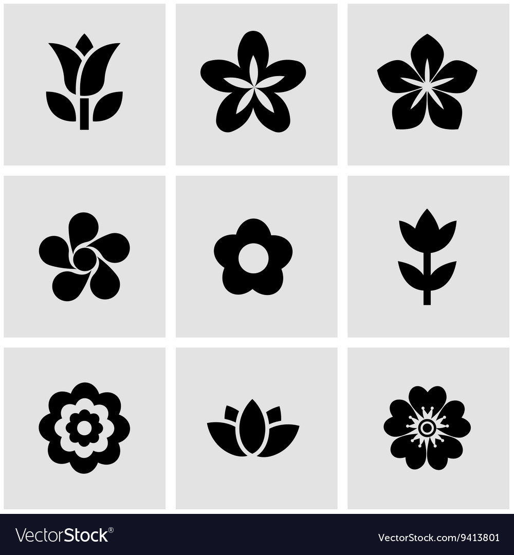Black flowers icon set vector