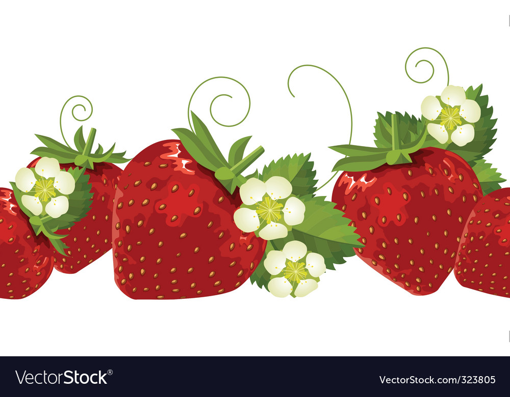 Border with strawberries vector
