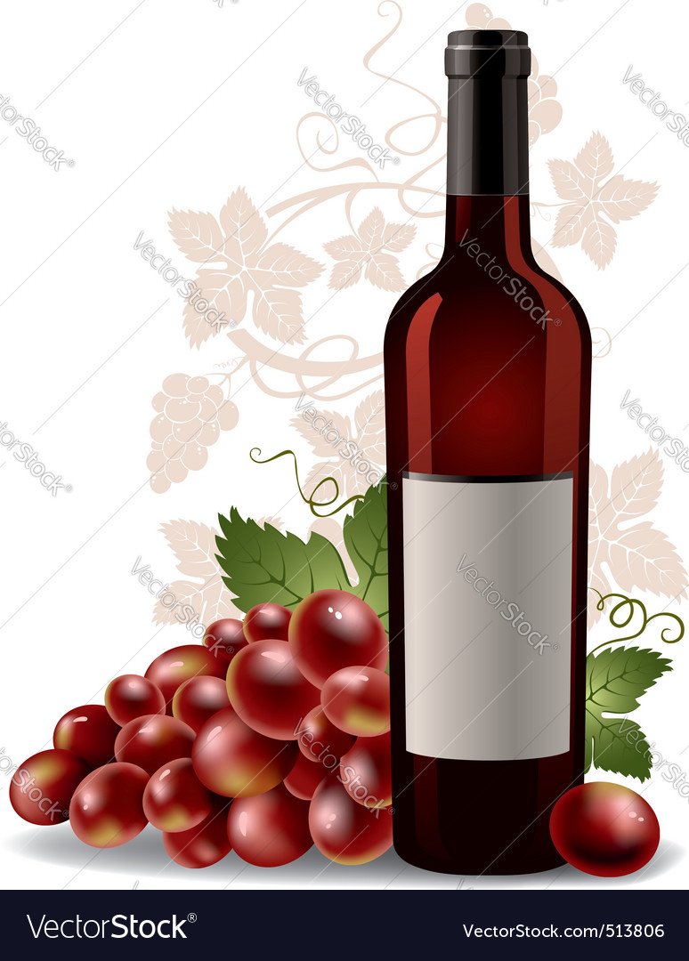 Wine bottle and grape vector