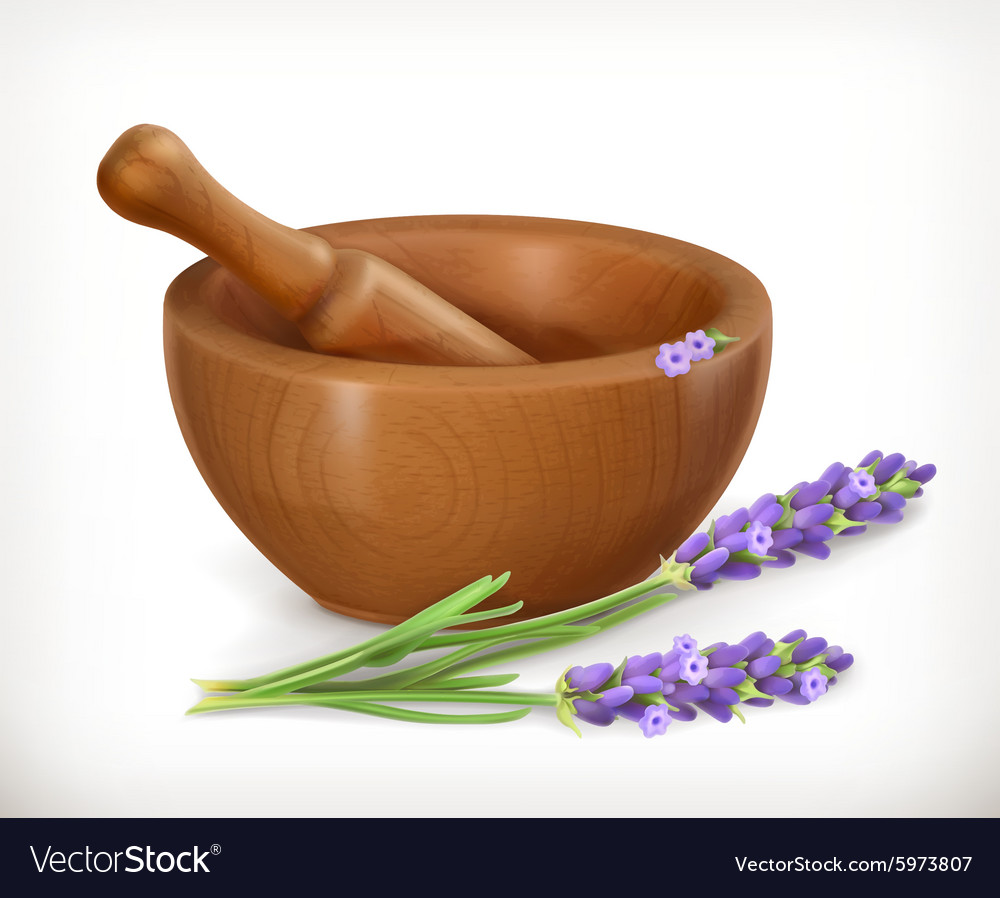 Lavender and wooden mortar vector