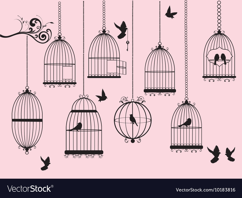 Cages vector