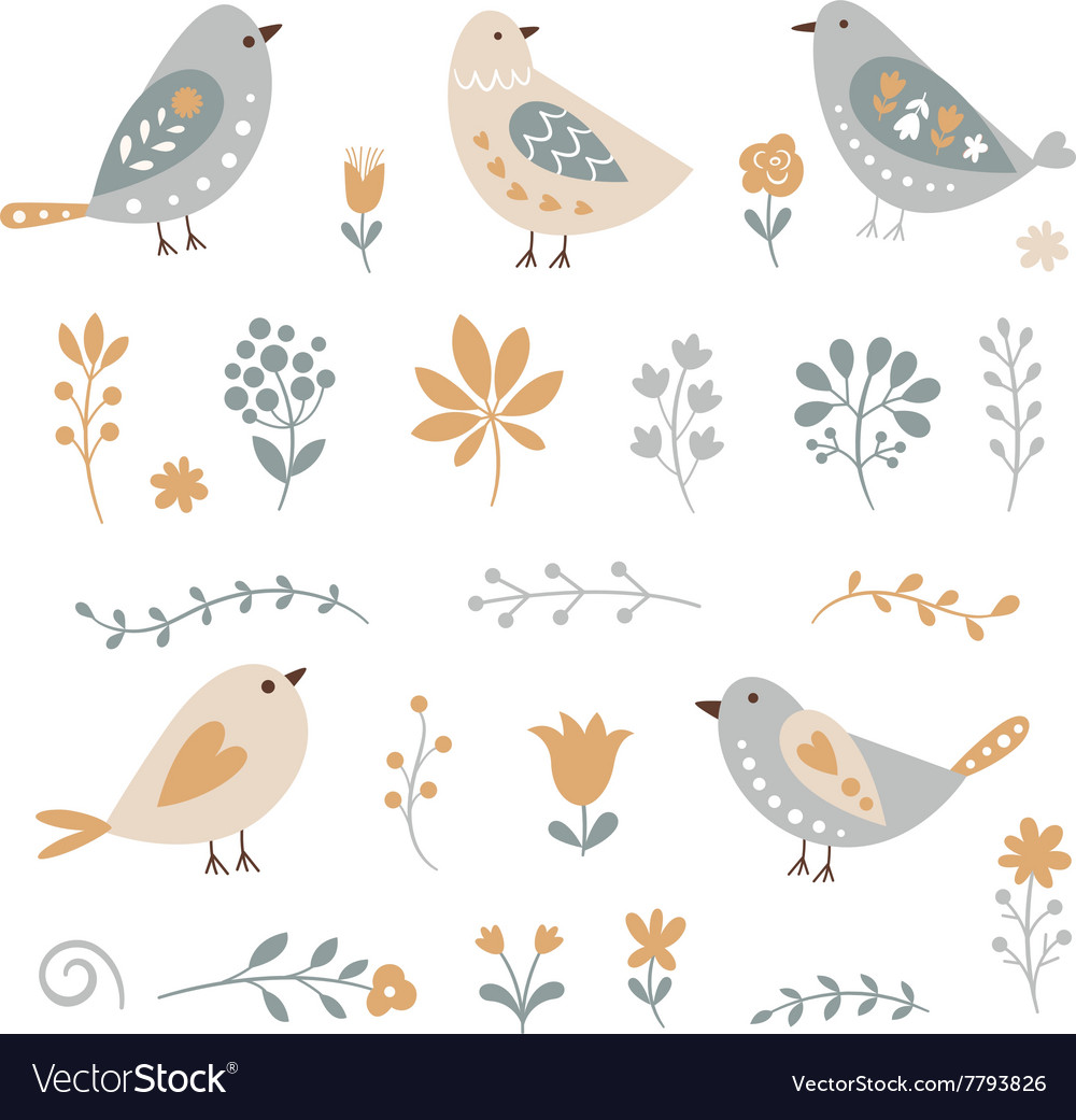Set of graphic floral elements and birds vector