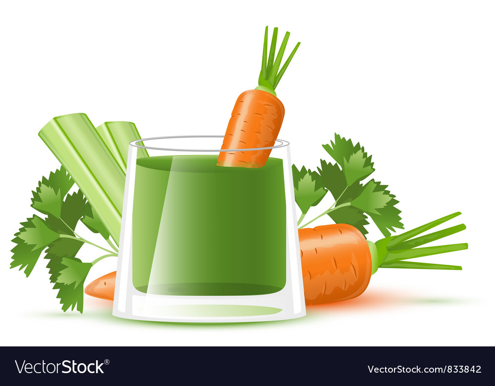 Celery juice with carrot vector