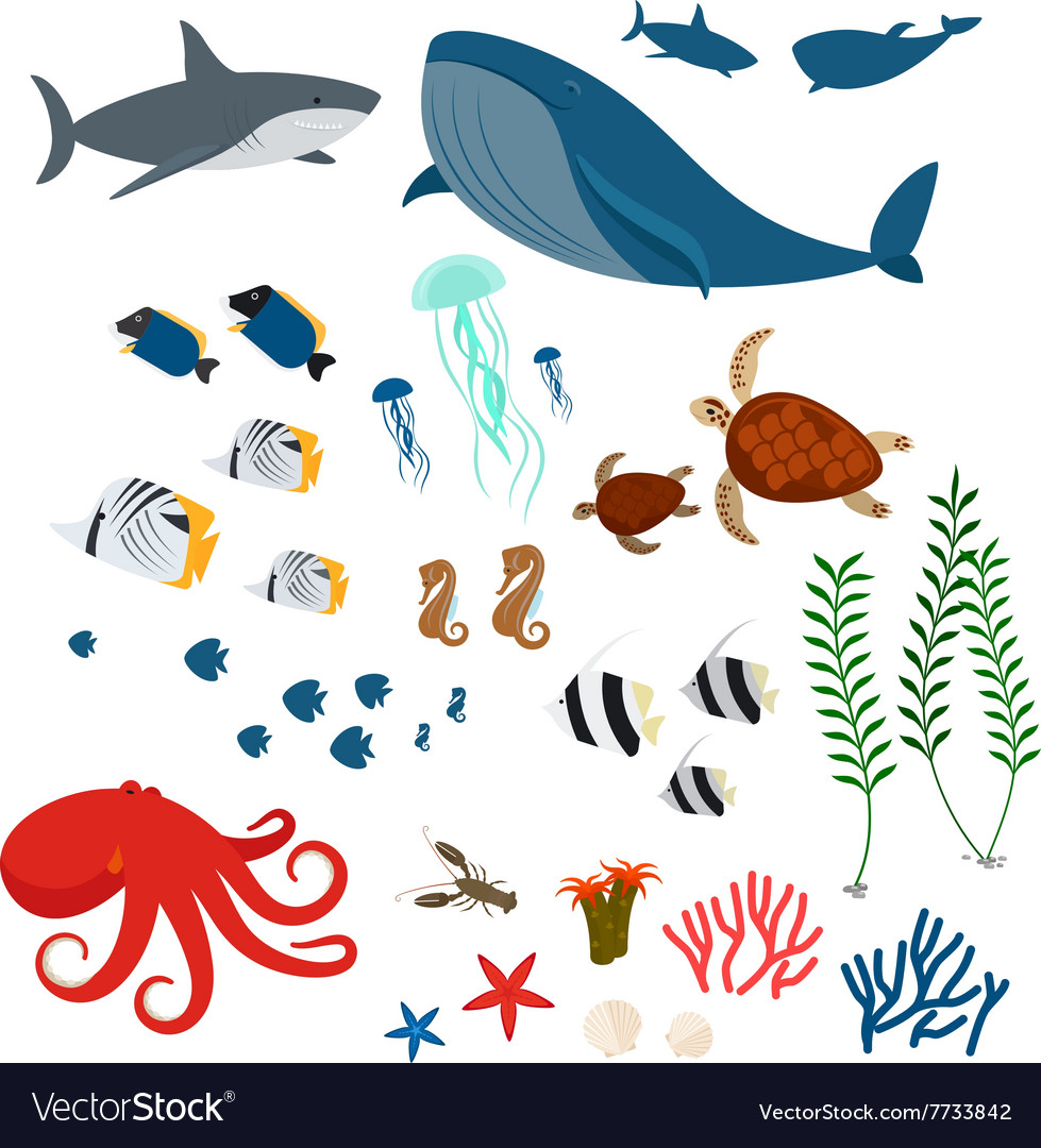 Ocean animals and fishes vector
