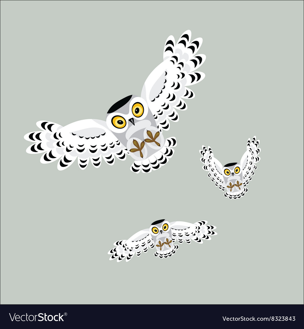 Three flying polar owls vector