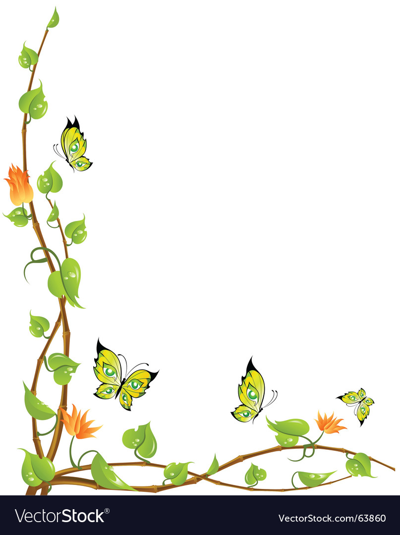 Vine and butterflies vector