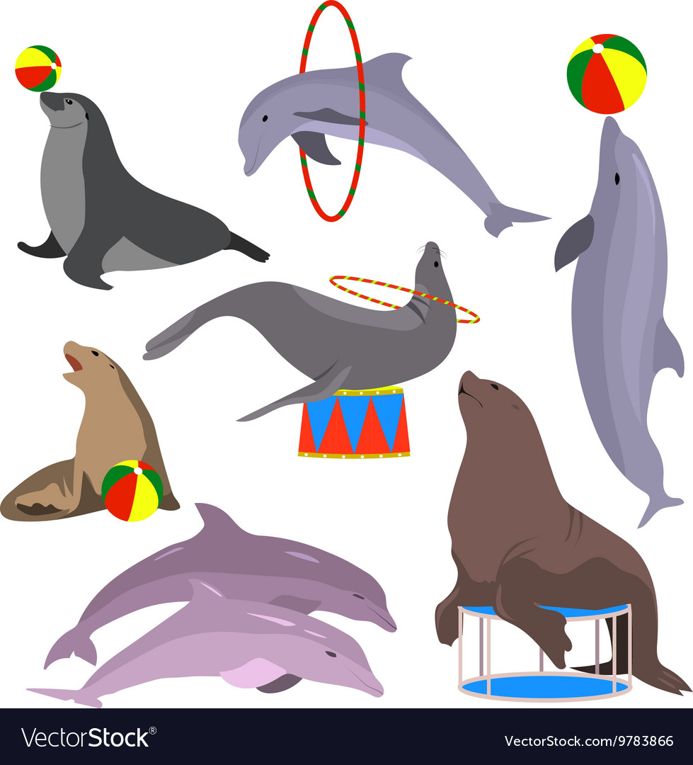 Marine circus animals set vector