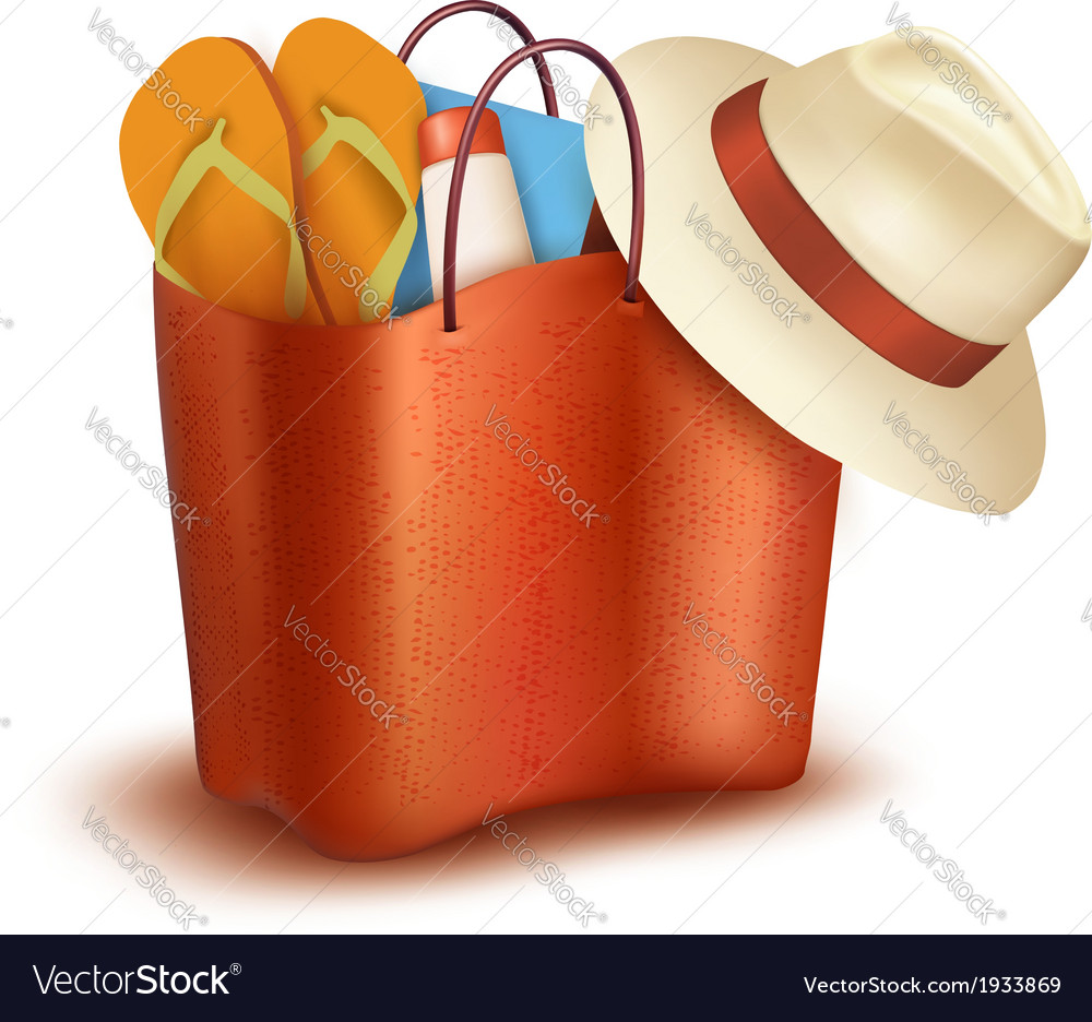 Beach bag with swimming suit vector
