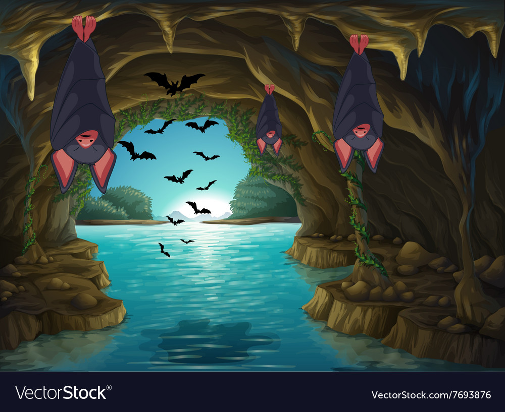Bats living in the dark cave vector