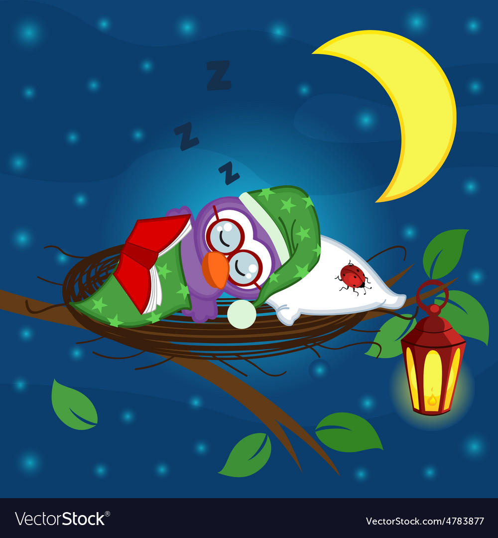 Bird sleeps in nest vector
