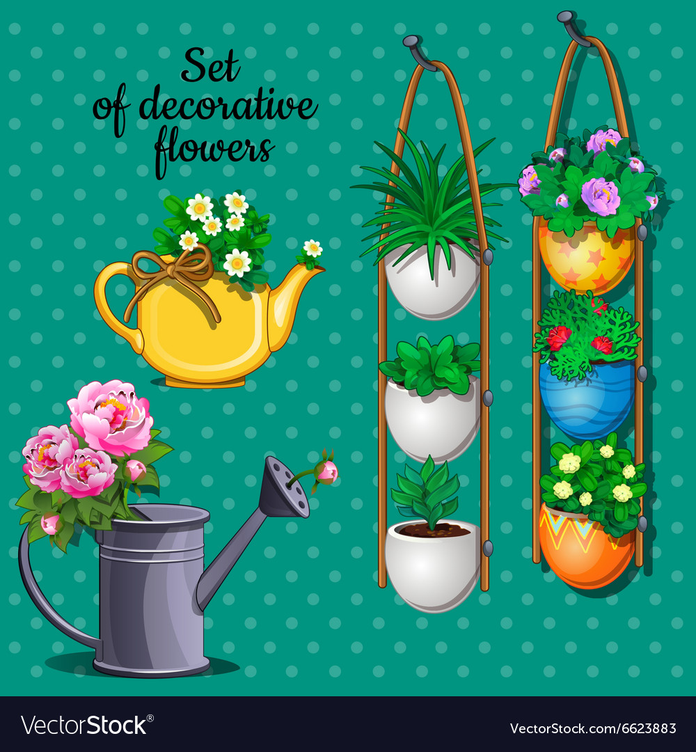 Ornamental plants set pots watering can and vase vector