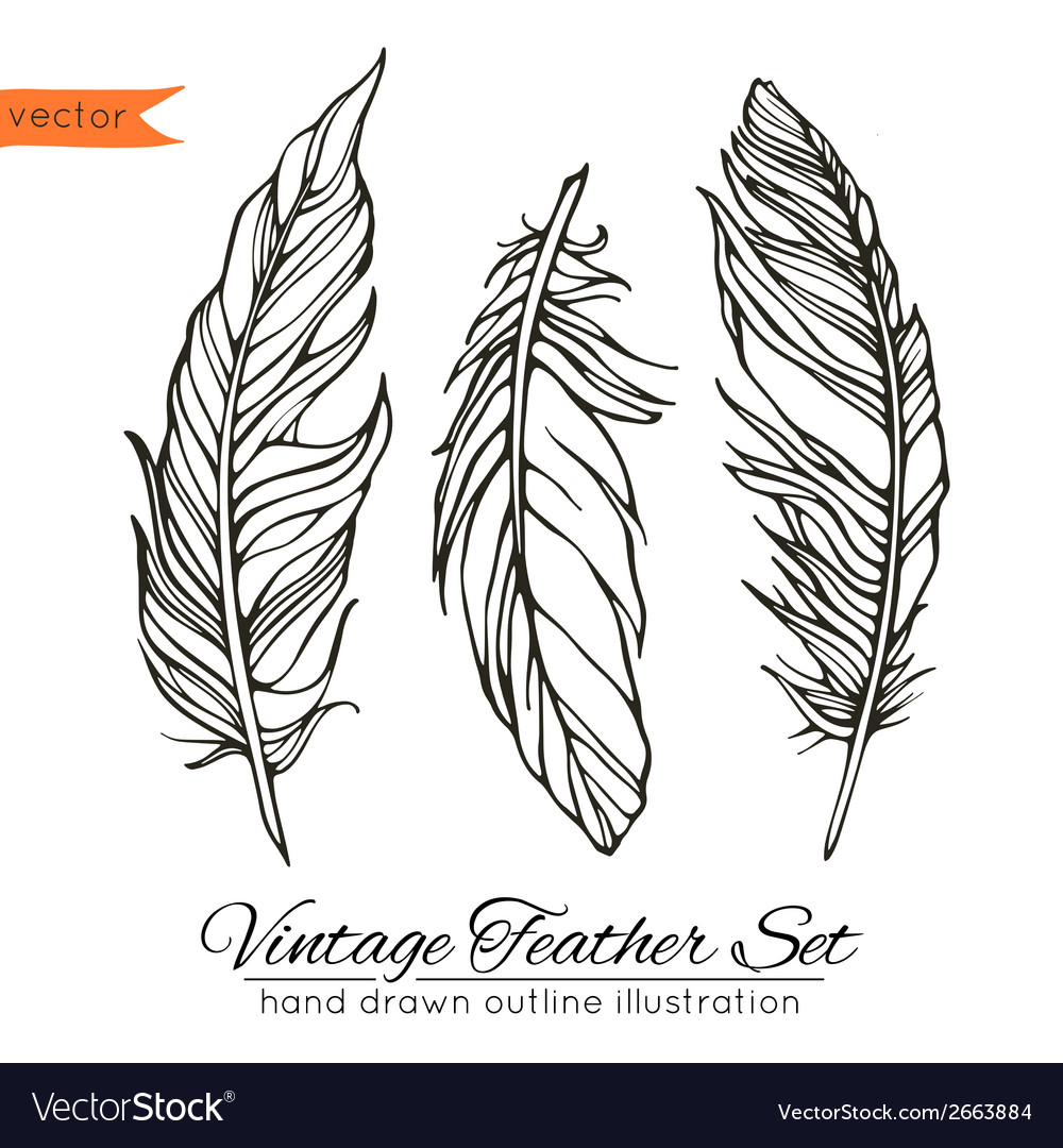 Vintage feather set isolated on white vector