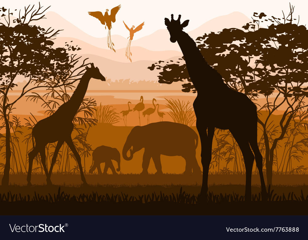 Nature with wild animals giraffe elephant flamingo vector