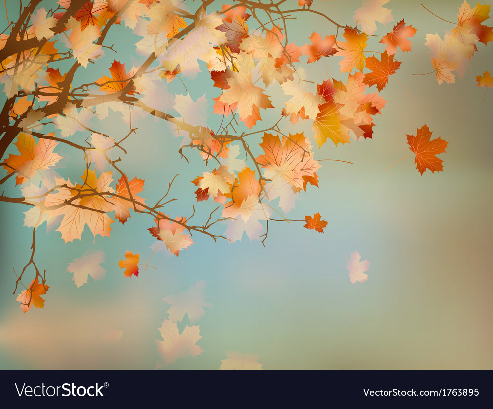 Background with autumn maple leaves eps 10 vector