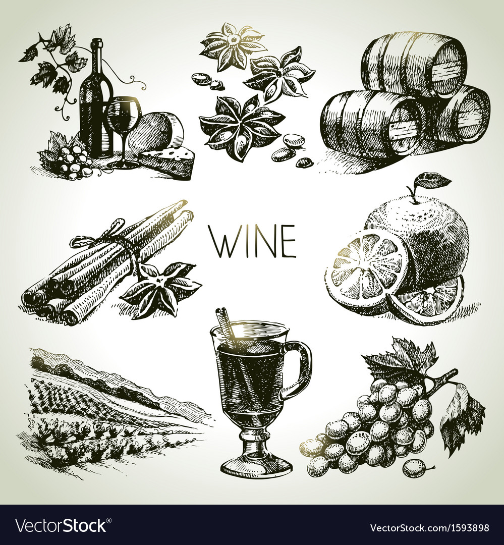Hand drawn wine set vector