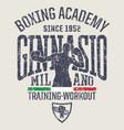 milan gymnasium boxing academy vector image