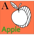 Letter A alphabet Coloring book apple vector image