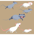 cartoon funny rats in various poses vector image
