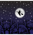 witch flying on a broom on a full moon vector image