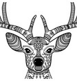 horned deer head with floral ornament vector image