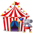 An elephant in front of the tent at the carnival vector image vector image