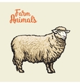 Image of sheep with black outline vector image