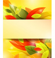 autumn background with color leaves vector image