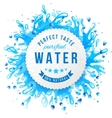 Paper emblem with water splashes vector image
