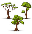 Set of flat stylized trees Natural vector image