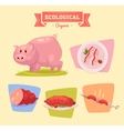 Farm animal and products made out of them Pig vector image