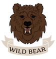 logo wild bear vector image