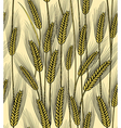 Seamless wheat ears background vector image