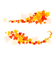 Autumn backgrounds with leaves vector image vector image