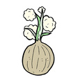 comic cartoon onion vector image