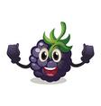 Berry vector image