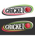logos for cricket sport vector image